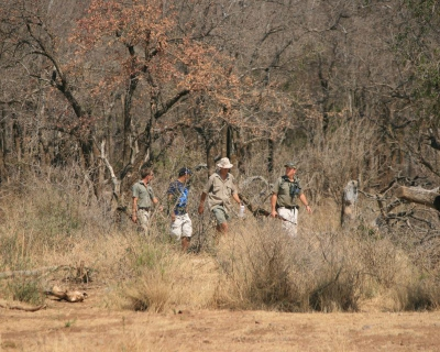 Walking Safaris at Jaci's Safari Lodge