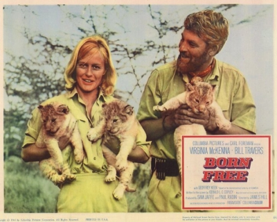 A Safari Set in a Scene from Born Free