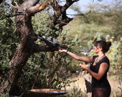 Conservation and Community Upliftment at Joy's Camp
