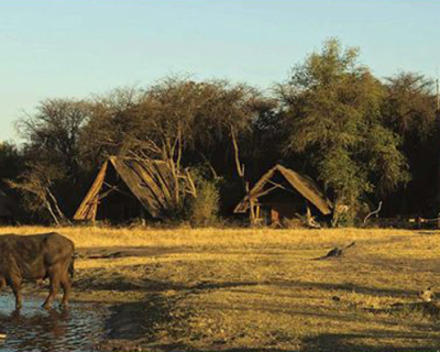 The Ultimate Safari Camp Experience at the Hide, Zimbabwe
