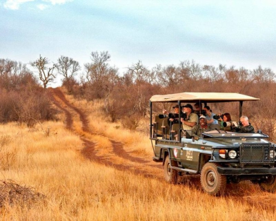 A Winter Madikwe Experience at Jaci's Safari Lodge