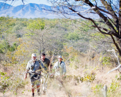 Why Musango's Steve Edwards is the Best Guide in Zimbabwe