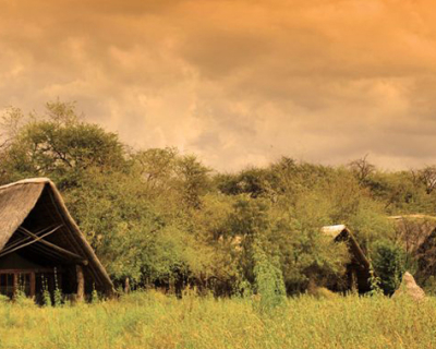 The Hide Safari Camp's love for the Green Season