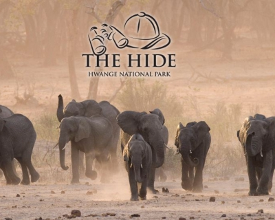 The Hide with a Revamped Website