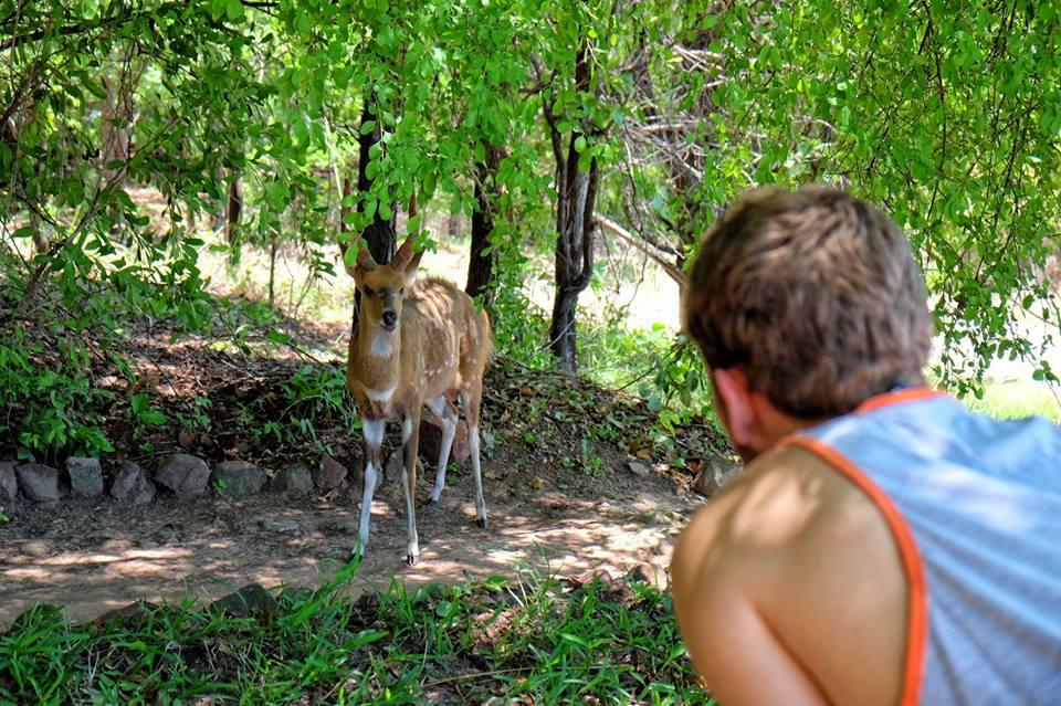 Making Memories at Musango Safari Camp