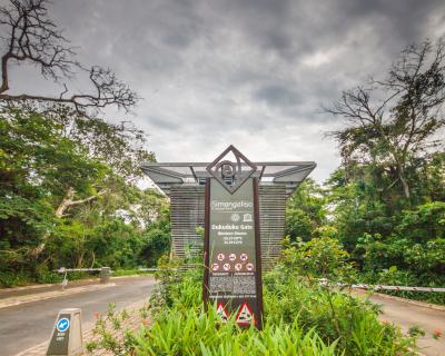 An update on Isimangaliso from Makakatana Bay Lodge