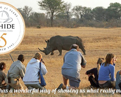 What's your story from The Hide Safari Camp?