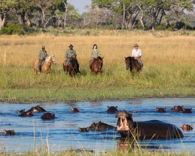 Hippos and Horseback Safaris