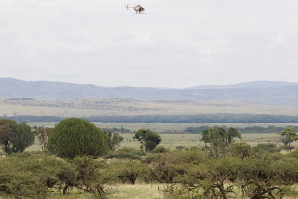 Helicopter in Lewa Conservancy with elephant on the ground