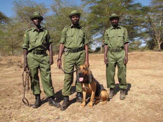 New T Dog and handlers Aug09