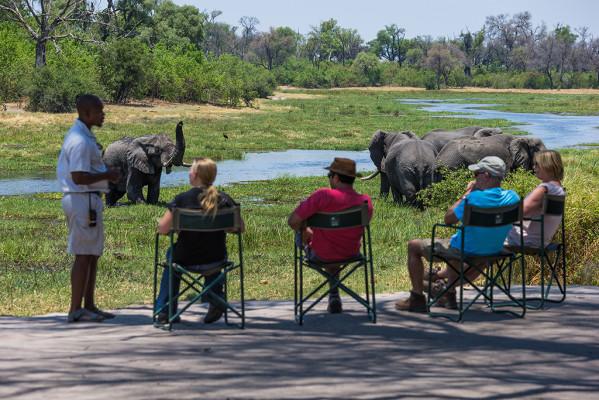 machaba-camp-deck-safari-1
