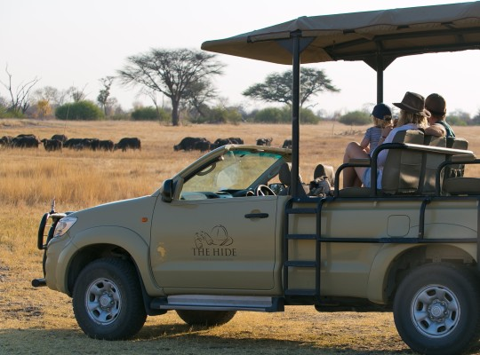 Game drive at The Hide