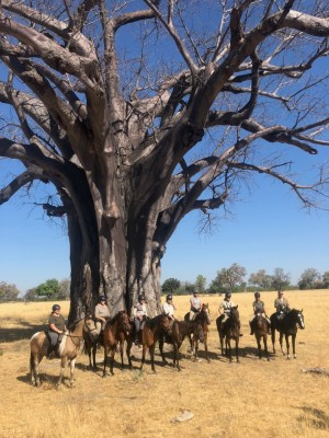 horse riding at African Horseback Safaris