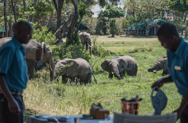 Eles in camp 4 (Copyright David Clode)