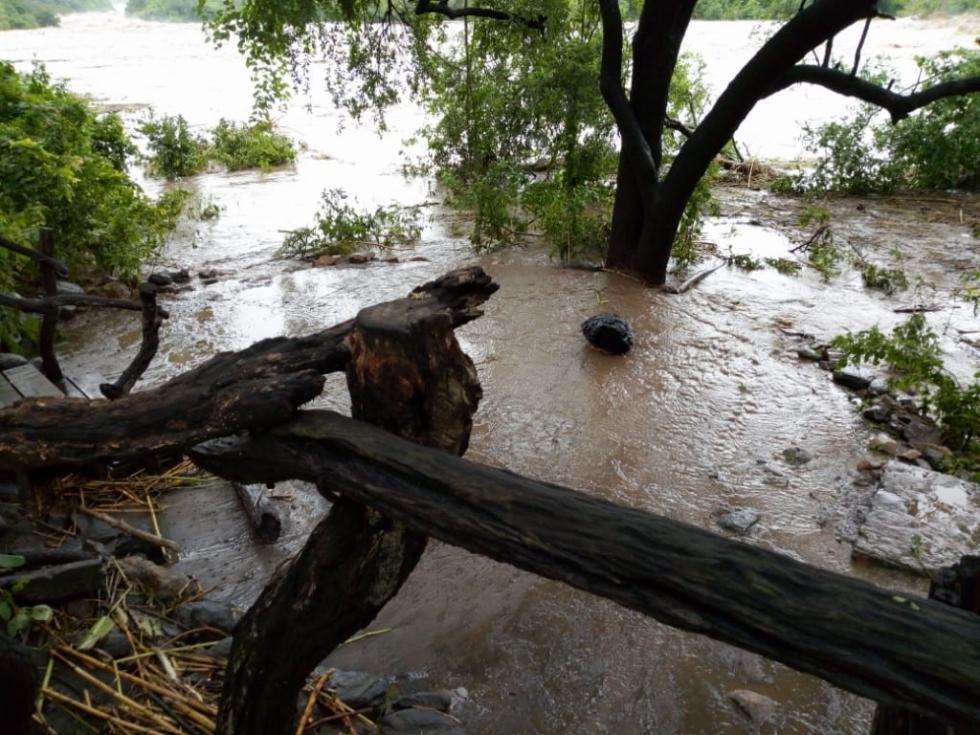 Cyclone Aftermath at Mkulumadzi