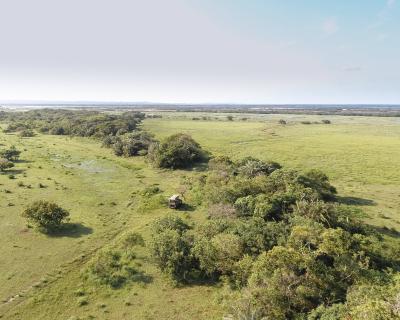 Rare Wildlife Sightings at Makakatana
