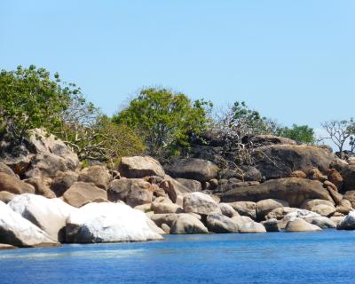 Snorkeling at Thumbi Island with Pumulani