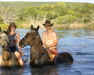 Swimming with Horses at Ant's Hill