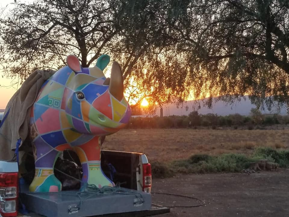 A Grand Road Trip and Royal Welcome for Mofalodi the Rhino