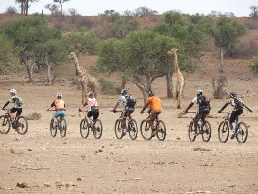 cycling at Mashatu Lodge