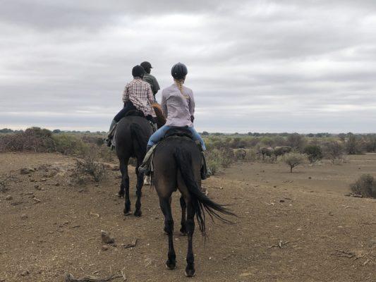 Horseback riding at Mashatu Lodge